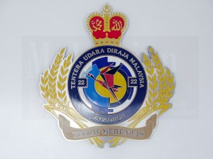 The 22nd Squadron crest. Its provisional pending a review.